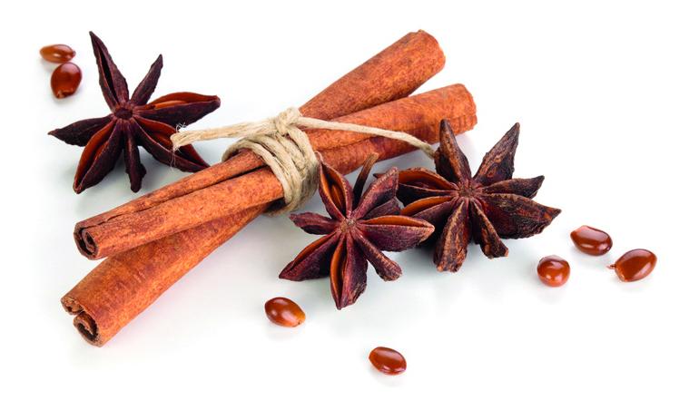 Star Anise And Cinnamon Sticks  .