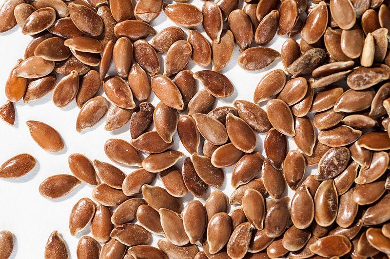 800px-Linum_usitatissimum_-_Seeds
